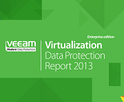Annual Data Protection Report 2013: Enterprise and SMB editions