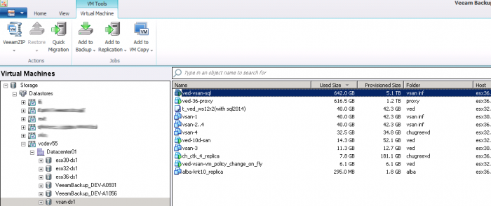 Veeam_vsan_Datastore_View