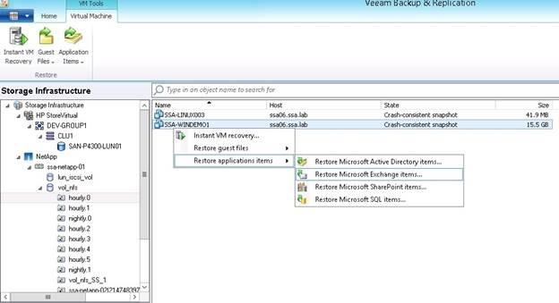 Veeam integration with NetApp Storage Snapshots.
